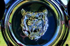Watts 3D Car Art | Jaguar #1