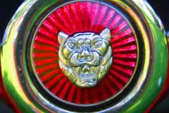 Watts 3D Car Art | Jaguar #2