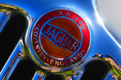 Watts 3D Car Art |  Jaguar XK140 #3