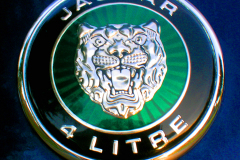 Watts 3D Car Art | Jaguar 4-Litre
