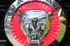 Watts 3D Car Art | Jaguar #5