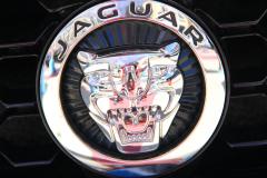 Watts 3D Car Art | Jaguar #6