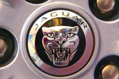 Watts 3D Car Art | Jaguar #8