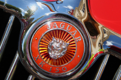 Watts 3D Car Art | Jaguar XK150