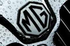 Watts 3D Car Art | MG #5