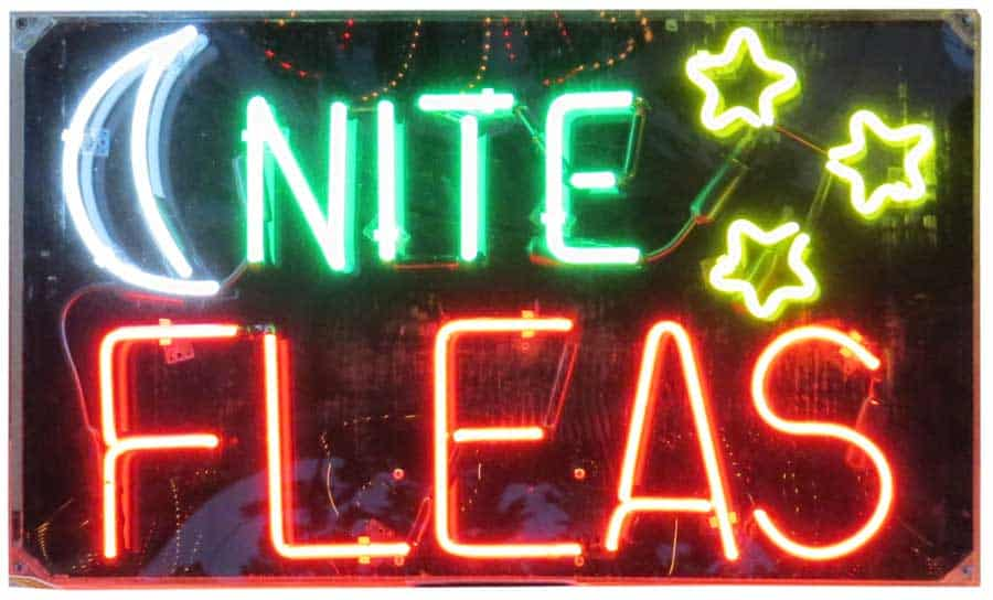 Pecatonica Illinois Late Night Flea Market