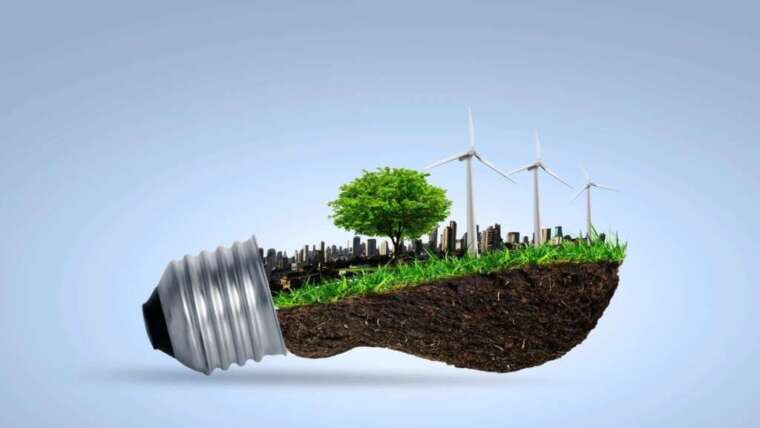 Effects of Renewable Energy Regulations and Recent Executive Order