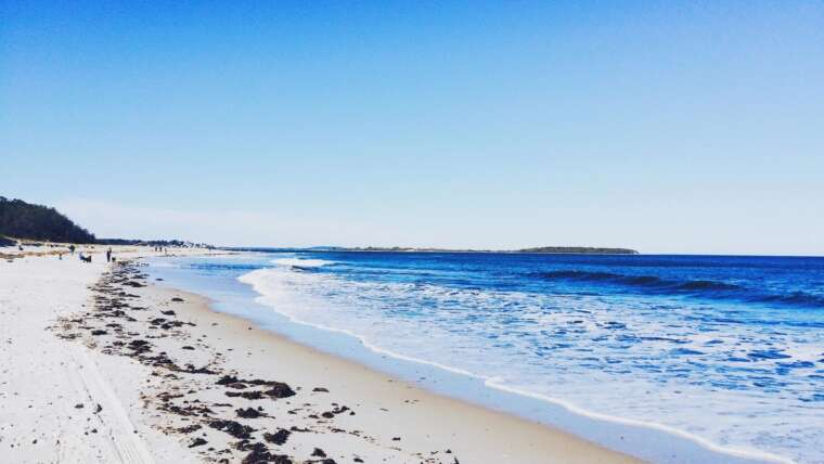 State Park and Beach Closures – Past Civil Lawsuits and Constitutional Implications