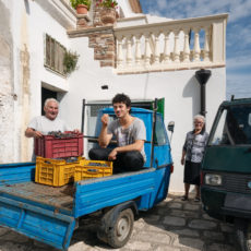 The Airbnb Italian Sabbatical: Your new country life in Grottole