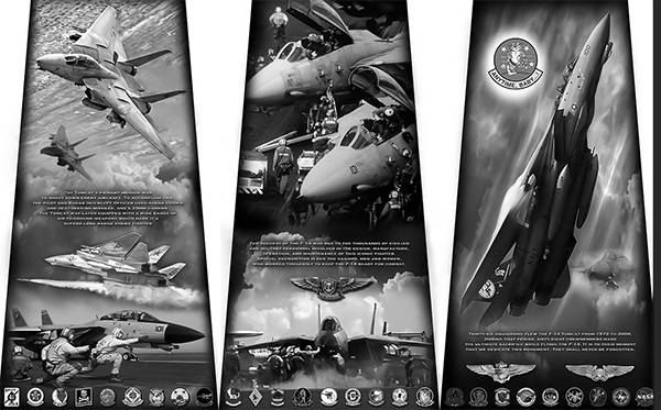 New Monument Honoring the F-14 Tomcat coming to San Diego