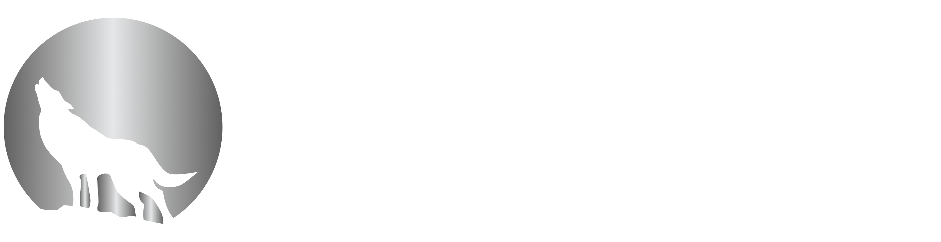 Moonlight Mobile Notary
