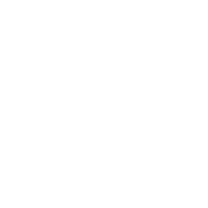 The Evolution of Checker Industrial