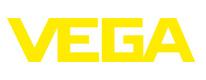 VEGA Americas, Inc