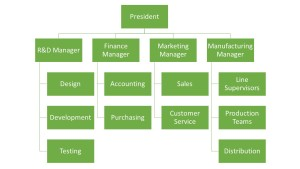 Functional Org Structure
