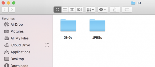 Folder for each type of file type imported into Lightroom in the month folder