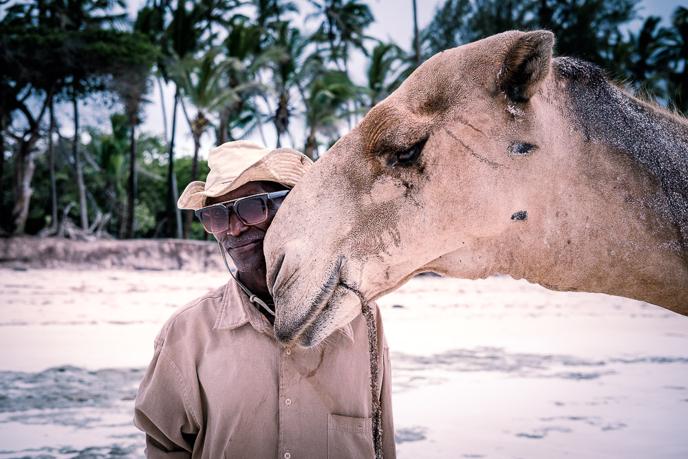 A man and his camels ~ finding connection to your subjects on the beach in Diani Beach, Kenya