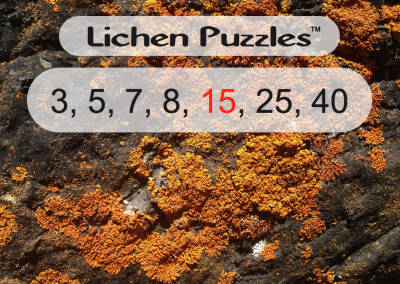 Cover Intro Slides for Puzzles.018