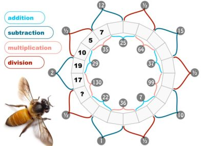 Pollinator Puzzles (multiplication, division)