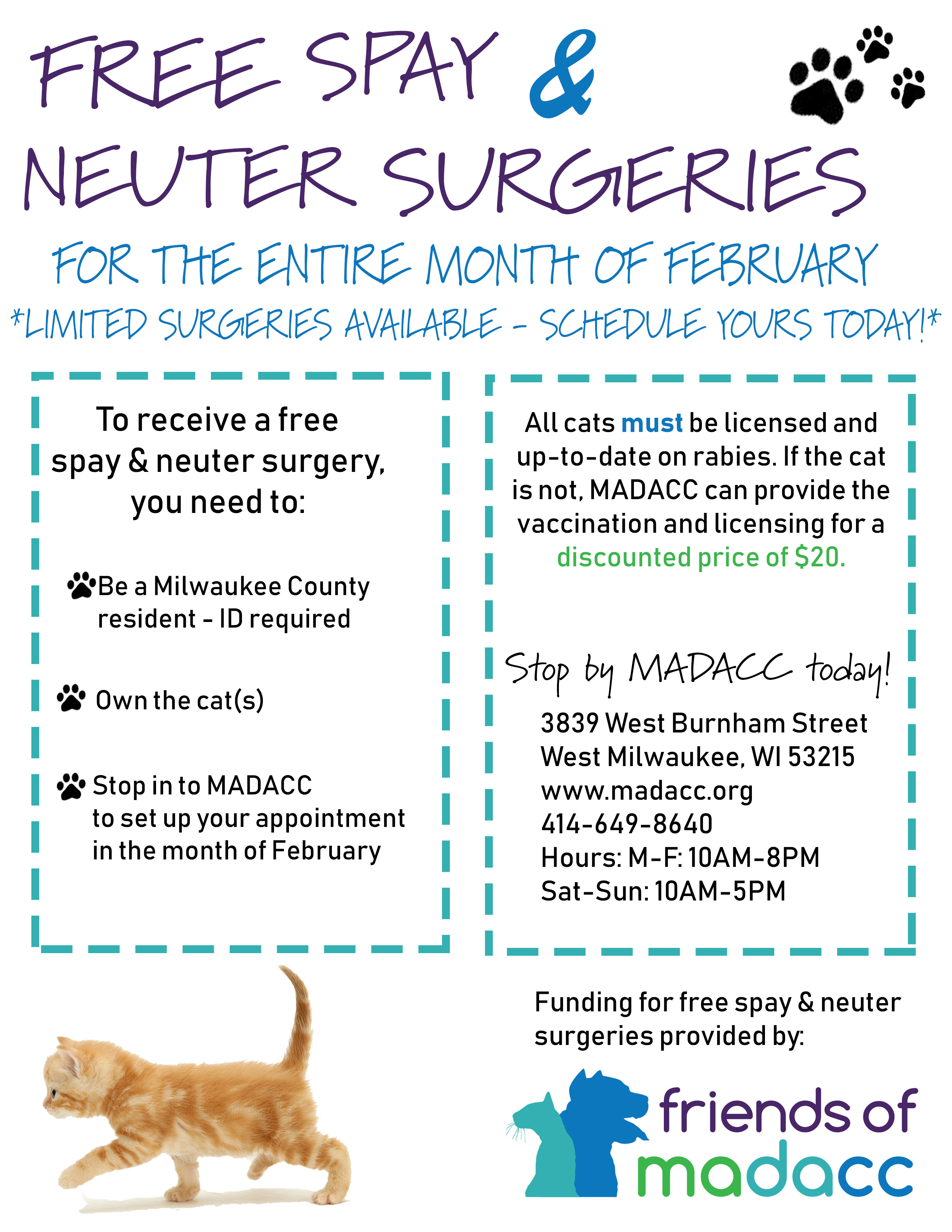 FREE Spay & Neuter Surgeries for Cats the Month of February - SPOTS FILLED  - Friends of MADACC