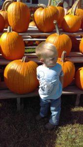 Pumpkin Farm Toddler