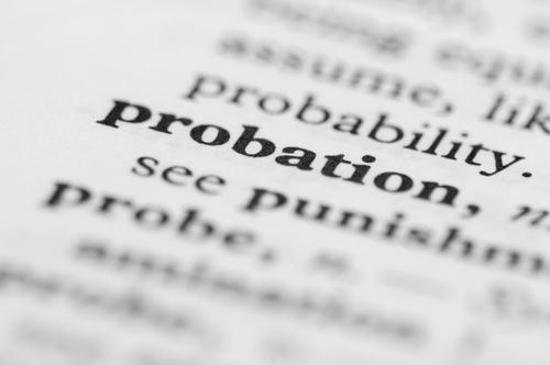 probation – Michael D  Weinstein, PA