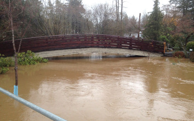 Flooding affects the Japanese Garden at Main City Park