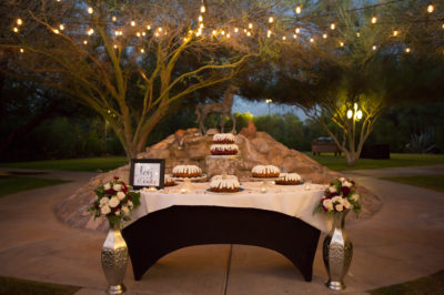 Oasis-at-Wild-Horse-Ranch-Wedding-19