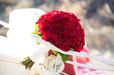 Saguaro-Buttes-Wedding-55
