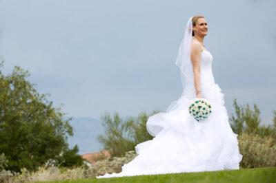 Highlands-Dove-Mountain-Wedding-10