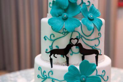 Highlands-Dove-Mountain-Wedding-24