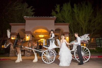 Highlands-Dove-Mountain-Wedding-25