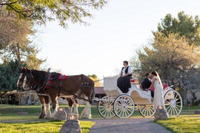 Tubac-Golf-Resort-Wedding-135