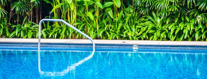 Top 5 Landscaping Ideas for Your Pool