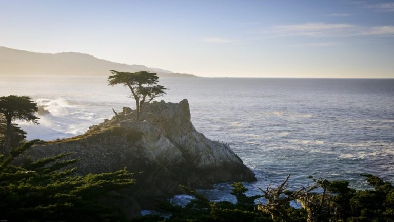 Lone-Cypress-17Mile-Dr-012113-1-367-1534x1024