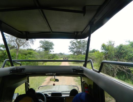 Akagera National Park: The Real Safari Zone