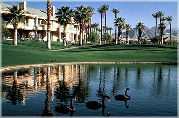 Marriott Desert Springs Villas 2016 Annual Fees