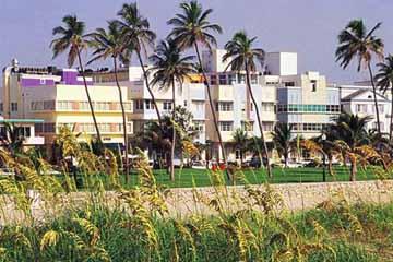 Hilton Grand Vacation South Beach Points Chart