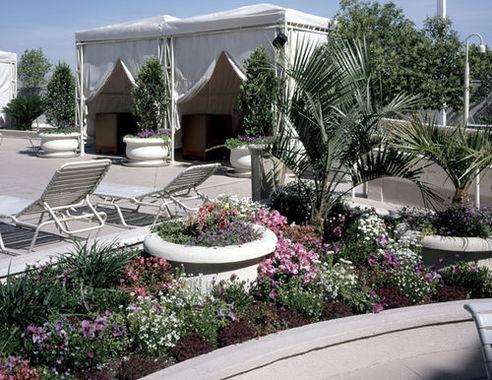 Villas at Polo Towers