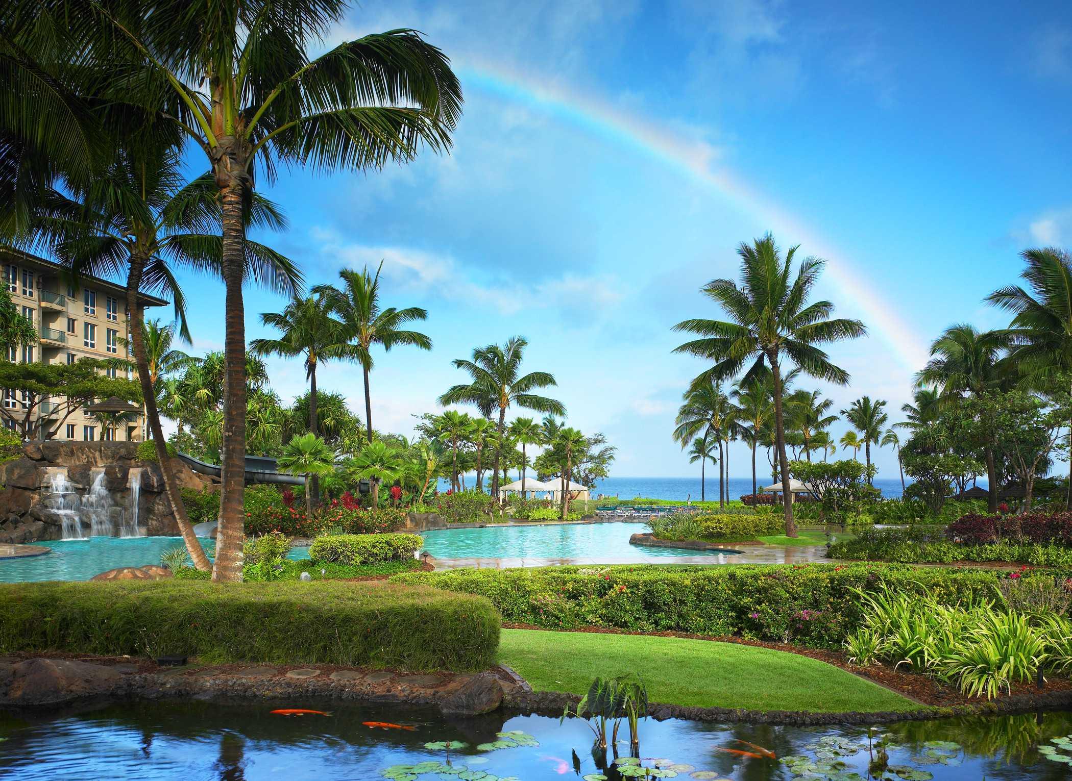 Valentine's Day on Maui at Westin Kaanapali Ocean Resort Villas