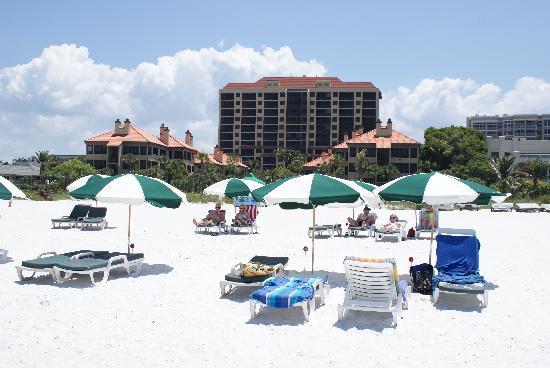 Hilton Grand Vacations Eagles Nest 2016 Maintenance Fees