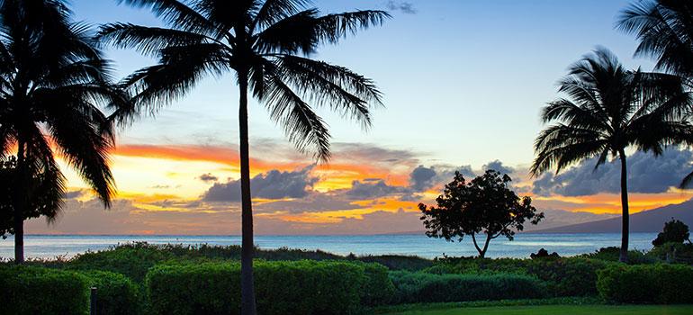 Westin Nanea Ocean Villas Services and Amenities