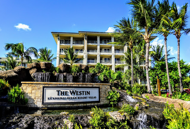 Westin Ka'anapali Ocean Resort Villas North 2020 Annual Maintenance Fees