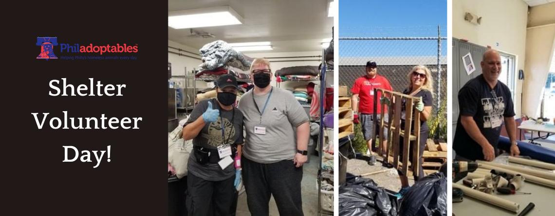Shelter Volunteer Day!