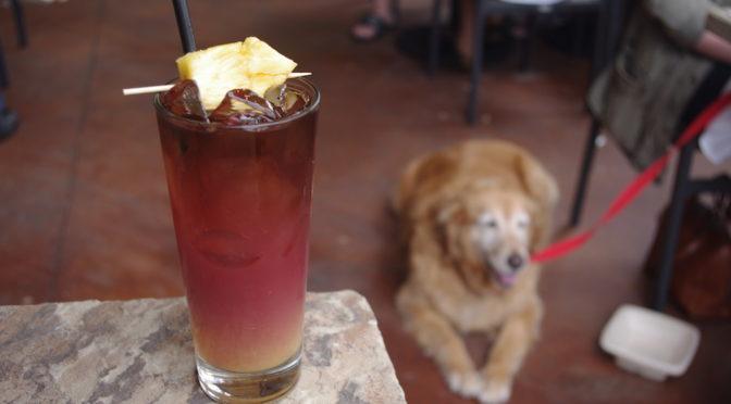 Lazy Dog Restaurant – Brunch