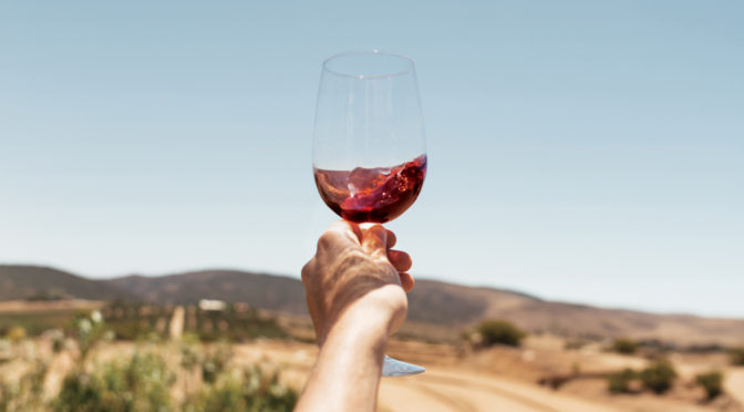 Scout & Cellar: Taking the Headaches Out of Great Wine