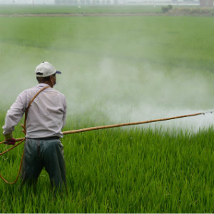 herbicide that can be inhaled and cause health issues