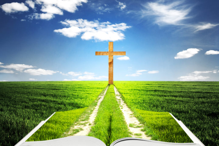 Image of a bible in grass leading to a cross.