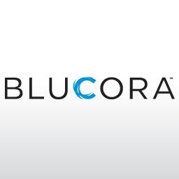 Bluecora Bellevue Office Space Headquarters