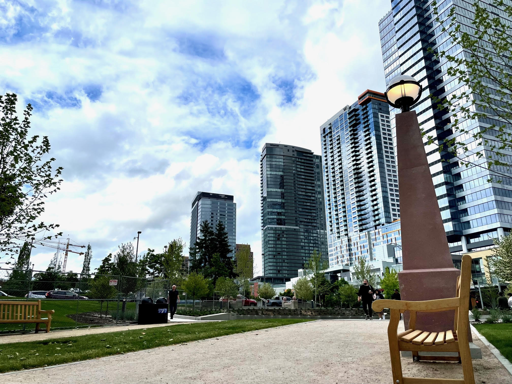 Bellevue City View