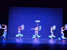 Arts and Culture Grant, Bellevue